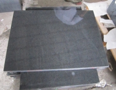 Darker Granite Tiles G654 Top and One long Polished