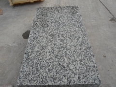 Grey Color G439 Granite Tiles with Polished Finish Way