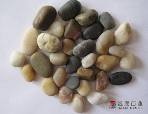Natural Mix Color Pebble Stone